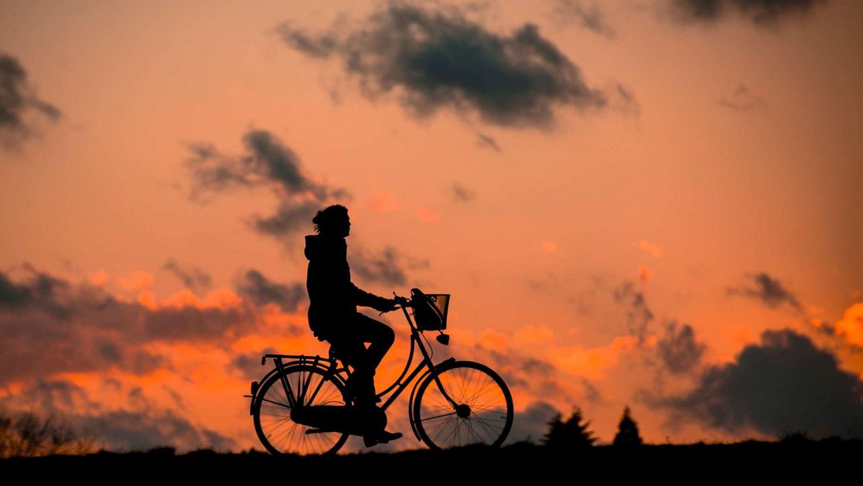 De meest populaire fietsen van Nederland